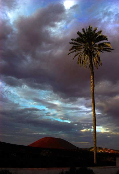 δύση, φως, ηλιοβασίλεμα, φοίνικας